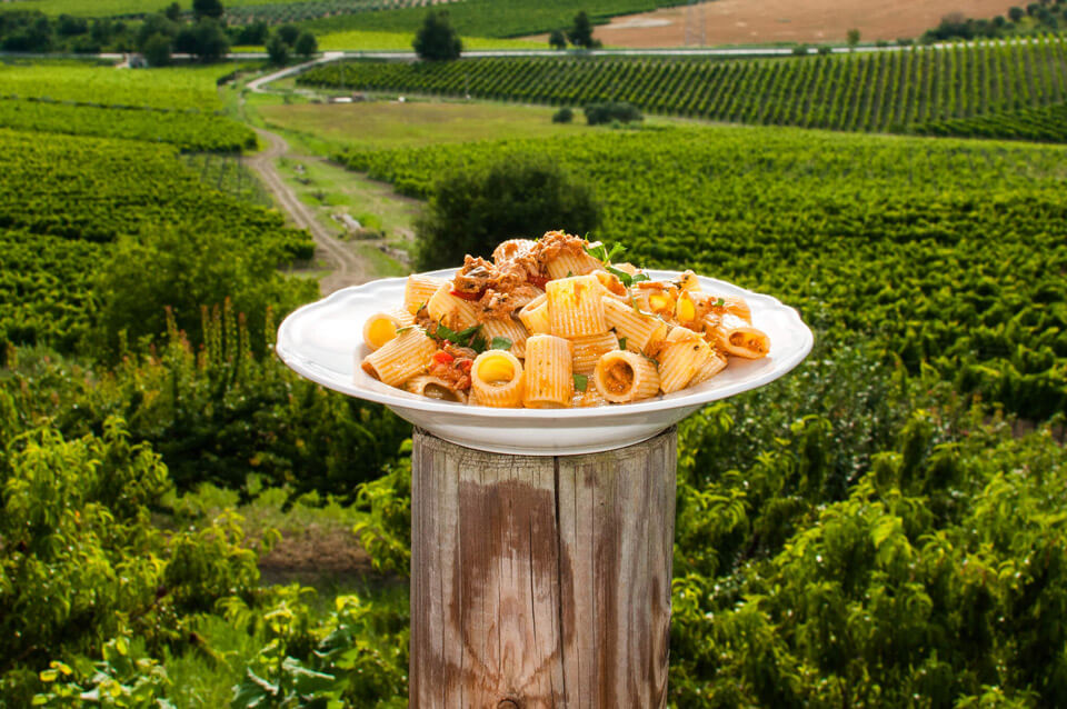 Italian food displayed at a country side for Italian tour guests